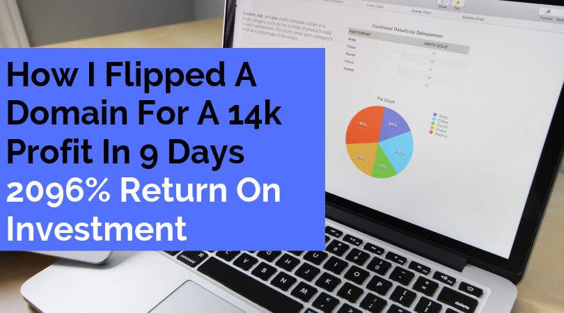 How I Flipped a Domain for a 14K Profit in 9 Days
