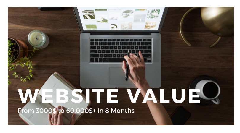 How I Increased A Websites Value From 3000$ To Over 60.000$ In 8 Months